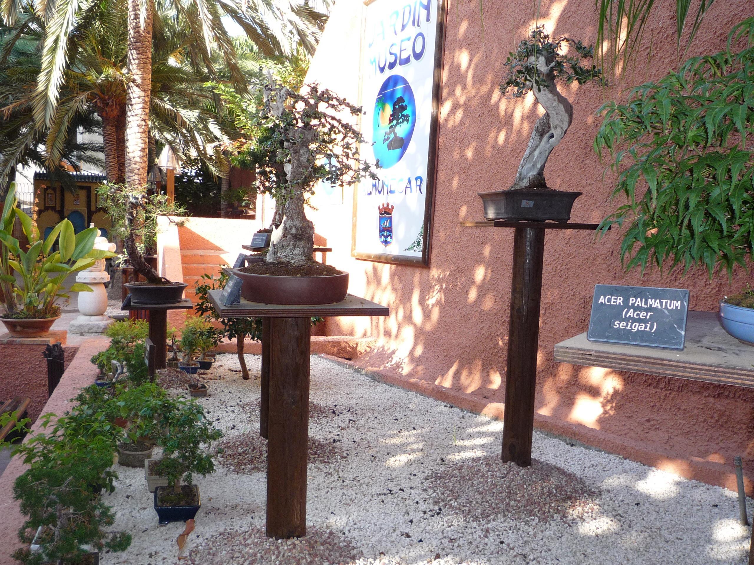 Jardín Museo del Bonsái