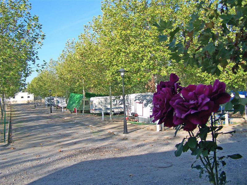 Camping Ciudad del Ocio