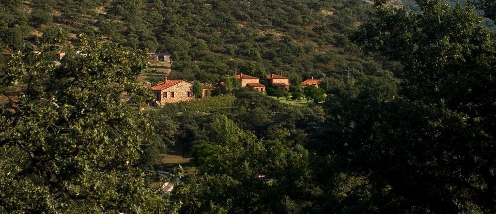 Casa Rural Molino Río Alájar - La Tortuga