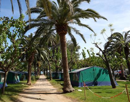 Camping Sierra Brava
