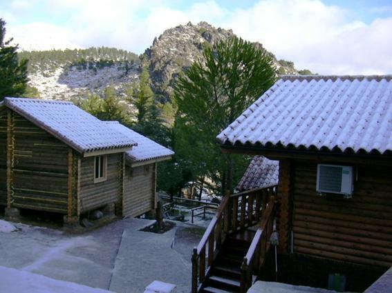 Camping Tajo Rodillo
