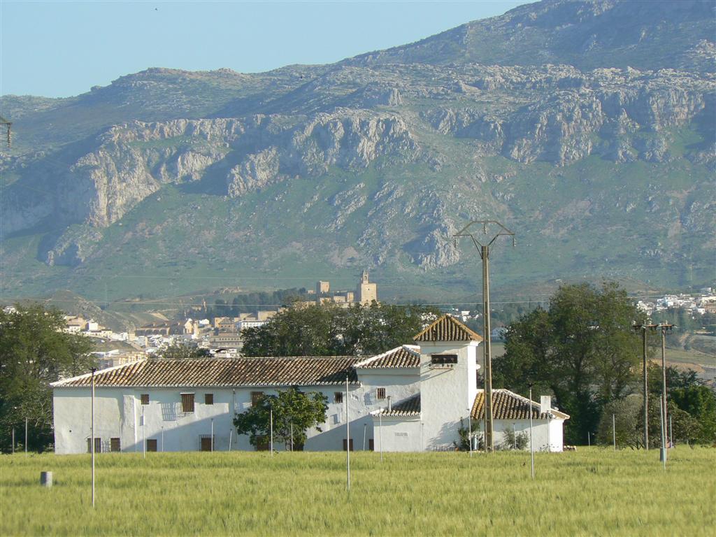 Vega de Antequera