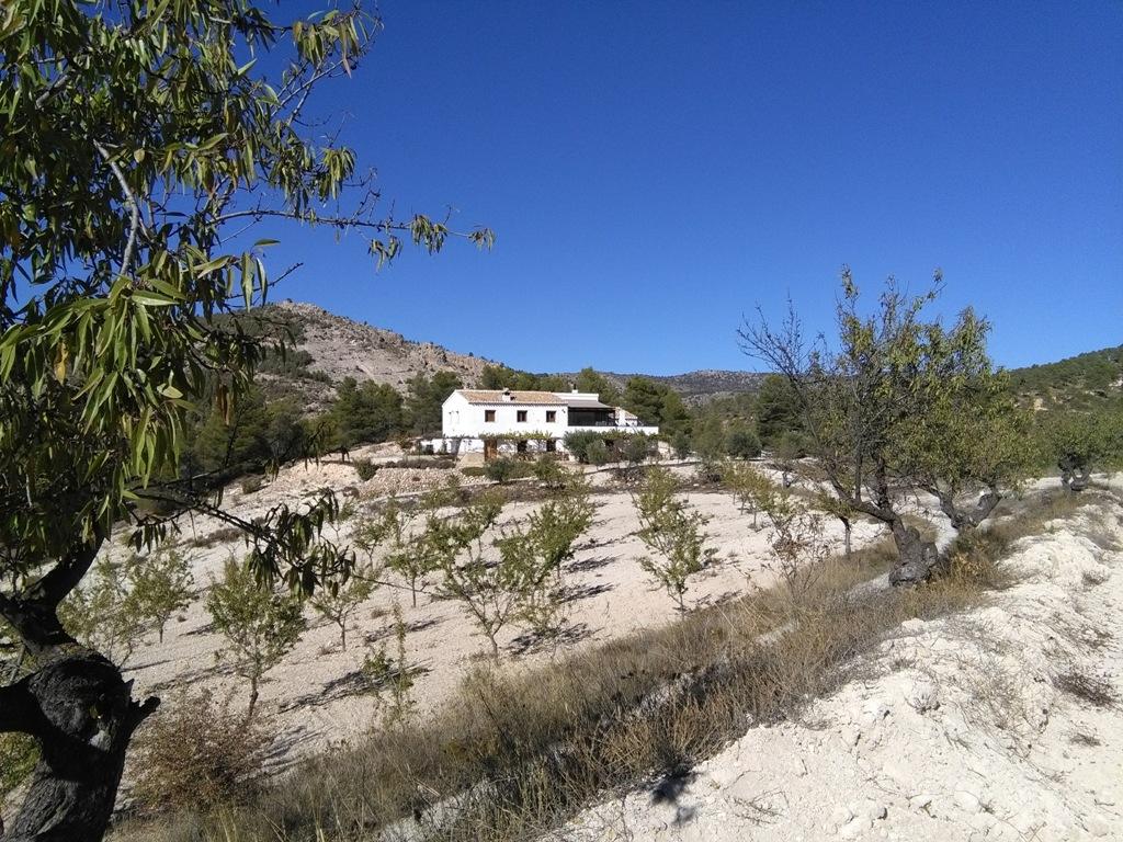Casa Rural Cortijo El Coto