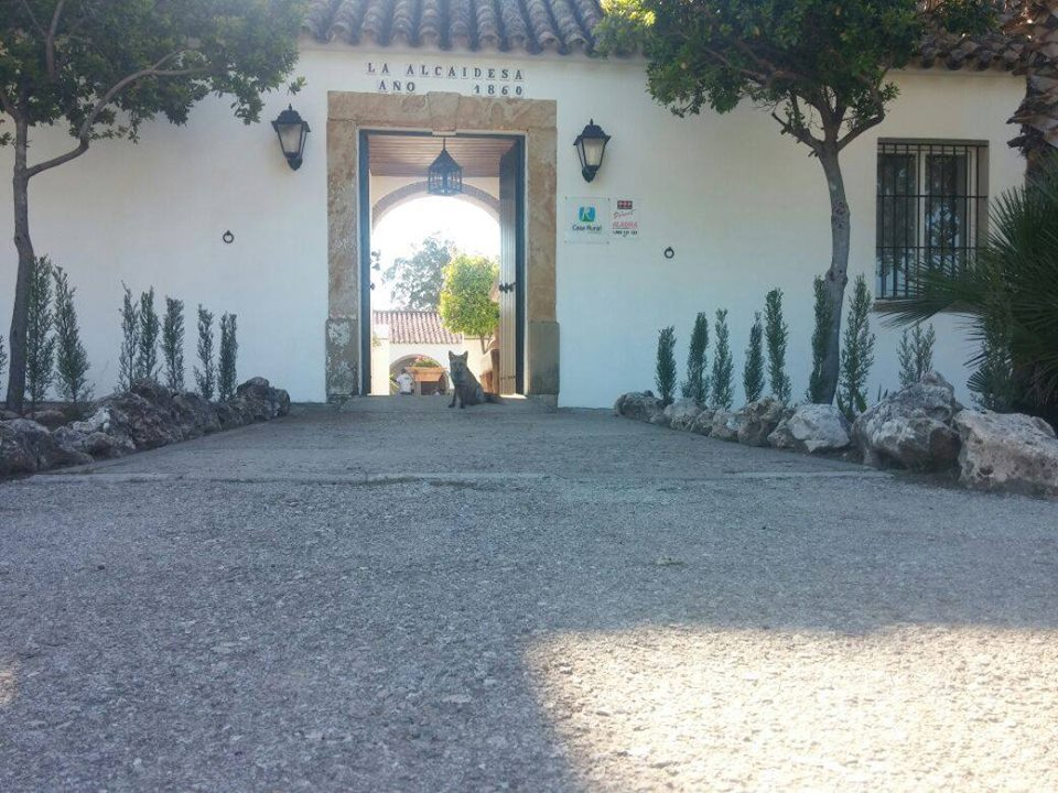 Casa Rural Cortijo La Alcaidesa