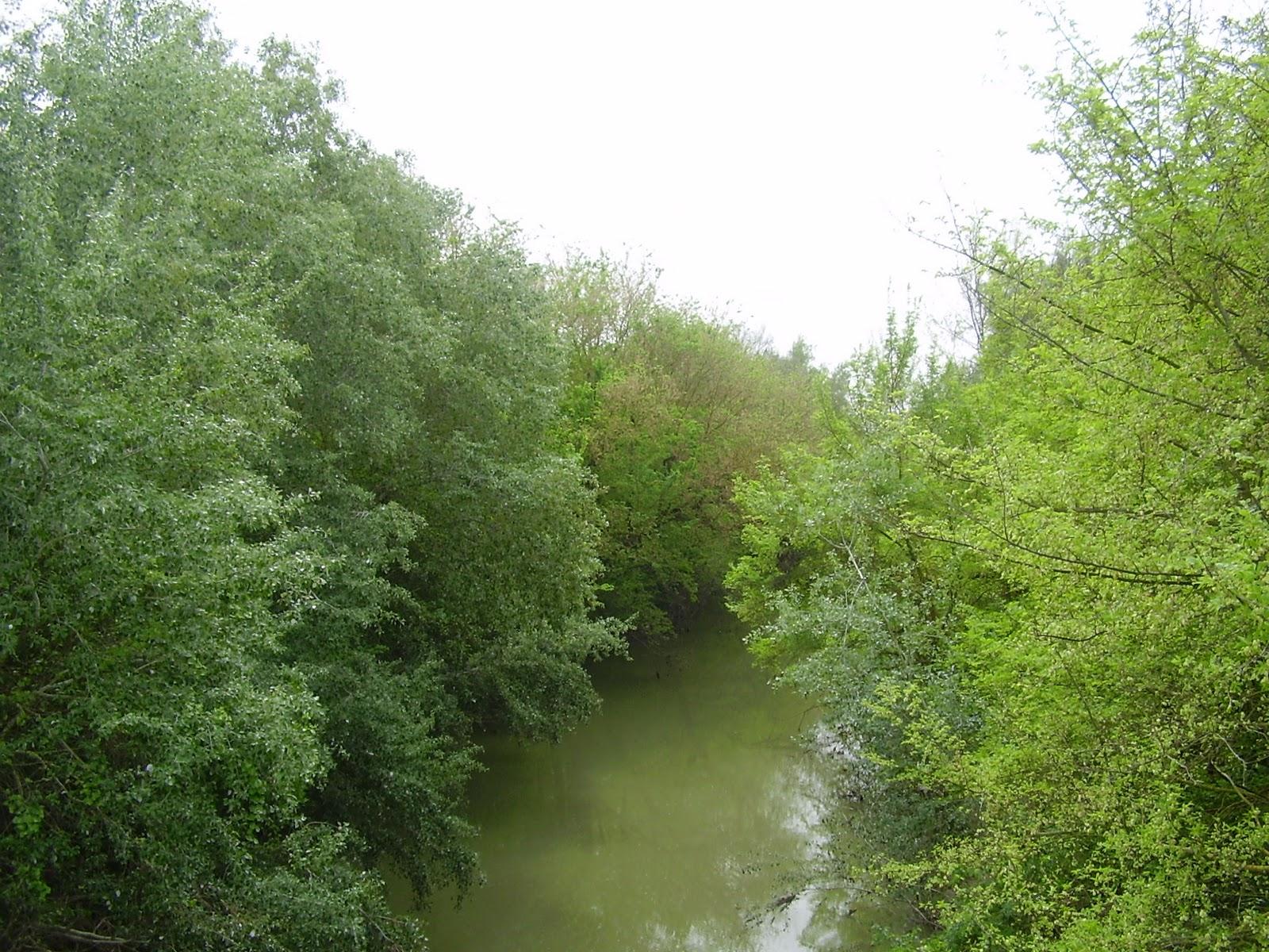 Corredor Verde del Guadiamar