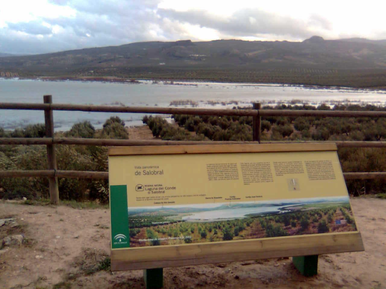 Laguna del Conde o Salobral