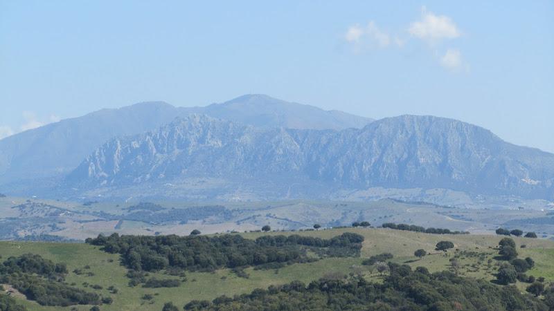 Sierra Crestellina