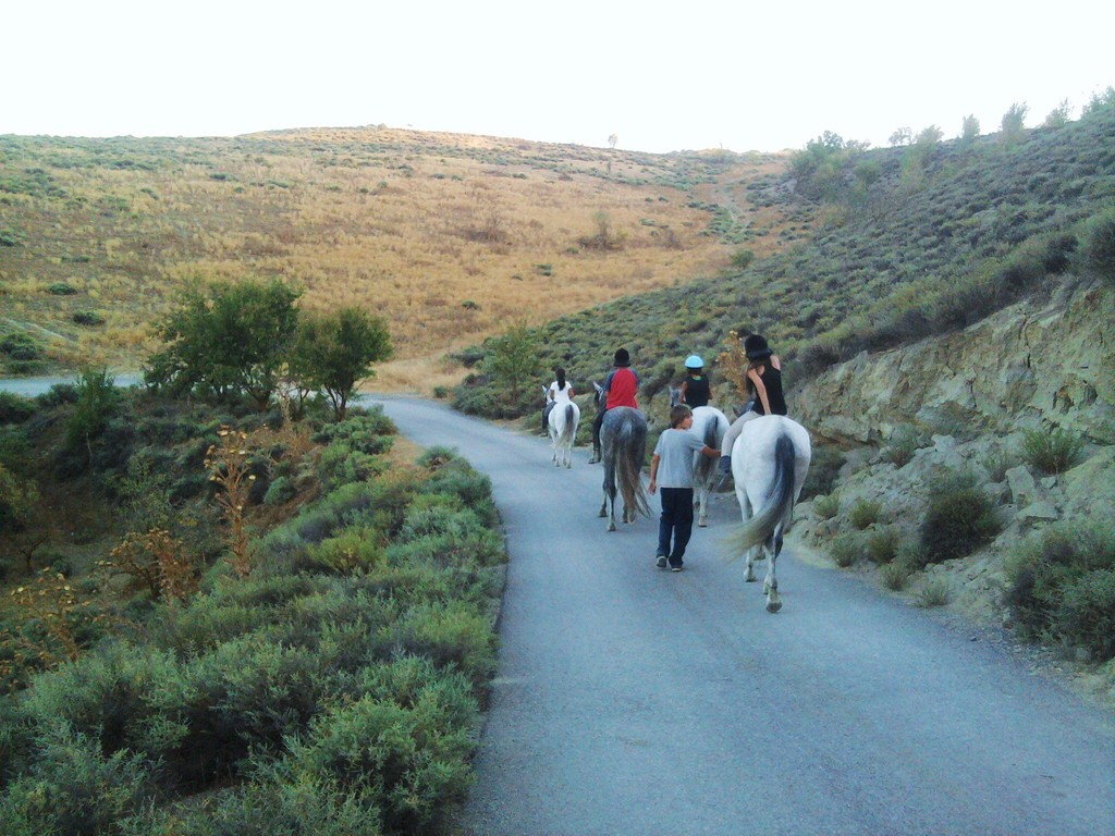 Hamelin: Finca Malpasillo - Actividad  (Granada)