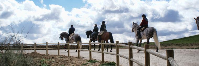 Hamelin: Escuela de Equitación Diego Romero - Actividad  (Láchar)