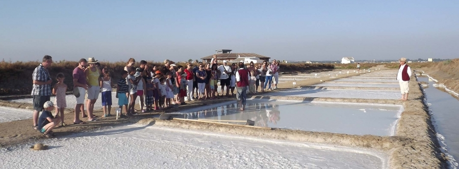 Hamelin: Alema Turismo y Medioambiente - Actividad  (Chiclana de la Frontera)
