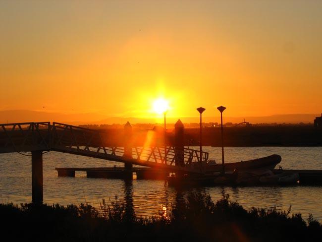 Hamelin: C.E.A.A.N. Coto de la Isleta - Actividad  (El Puerto de Santa María)
