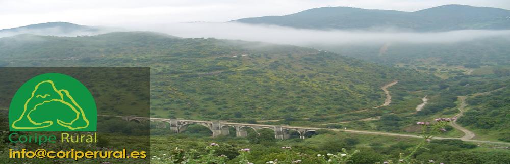 Hamelin: Vía Viva - Coripe Rural - Actividad  (Coripe)