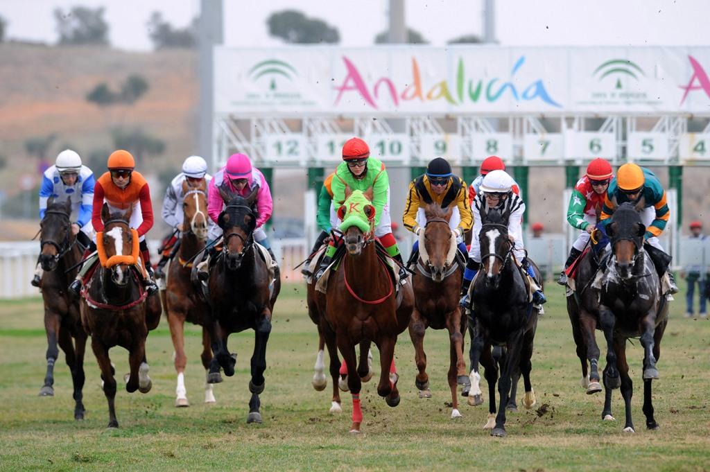 Hamelin: Gran Hipódromo de Andalucía - Actividad  (Dos Hermanas)