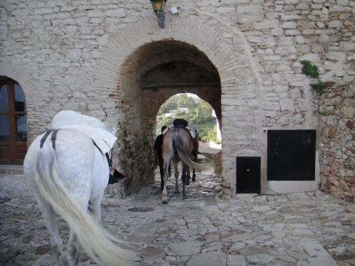 Hamelin: Castellar Gestión del Patrimonio - Actividad  (Castellar de la Frontera)