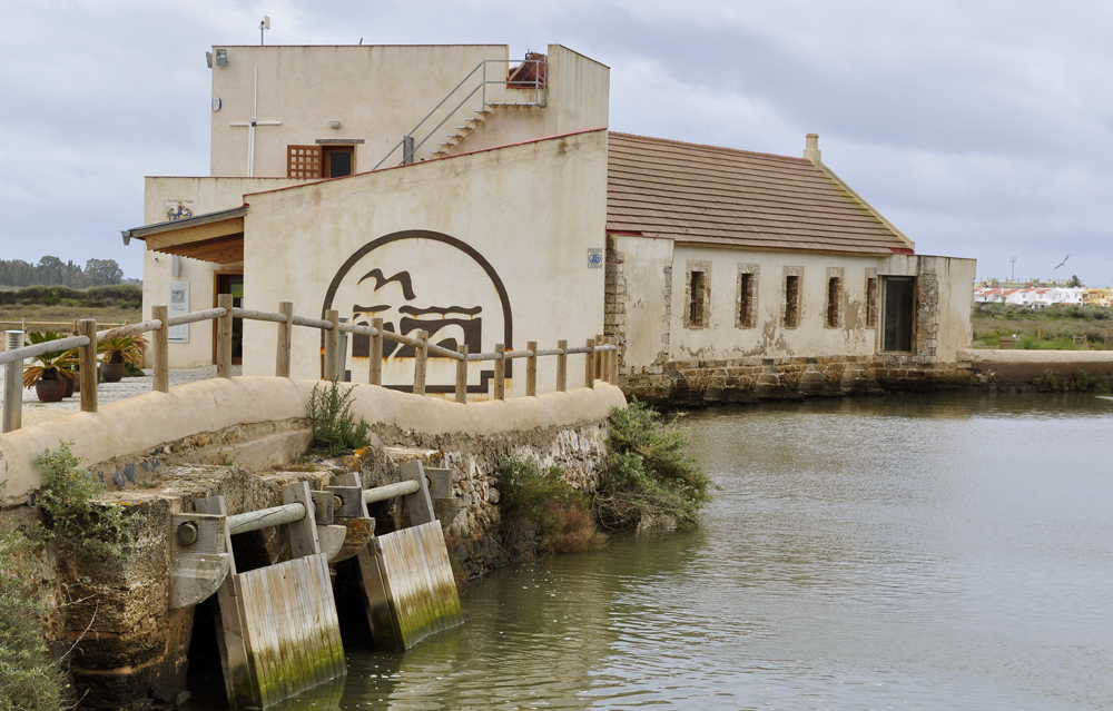 Molino Mareal El Pintado