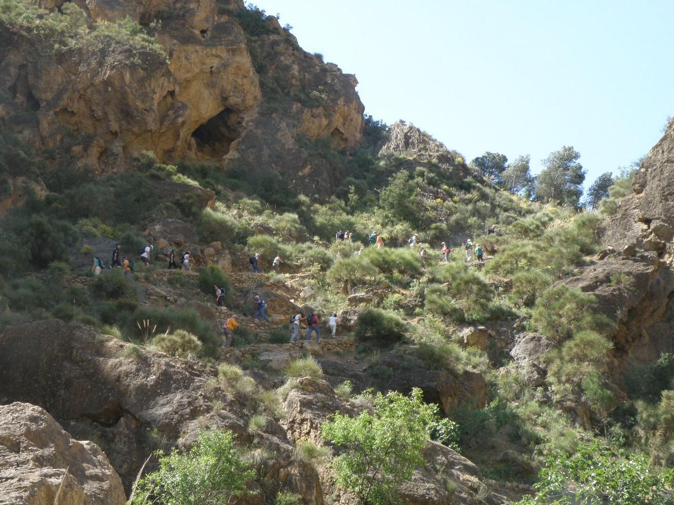 Cordel de la Solana Trail - PR-A 16