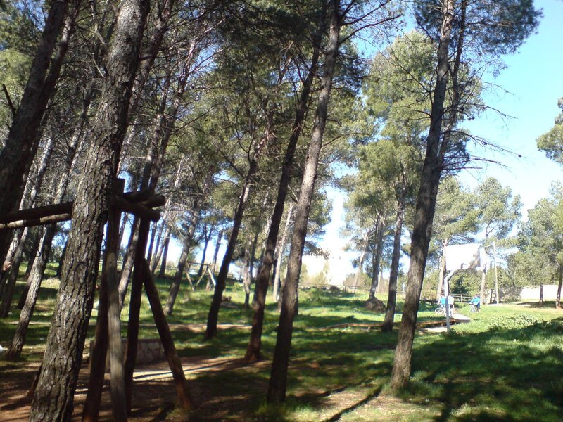 Sendero Pinares del Neveral - PR-A 127
