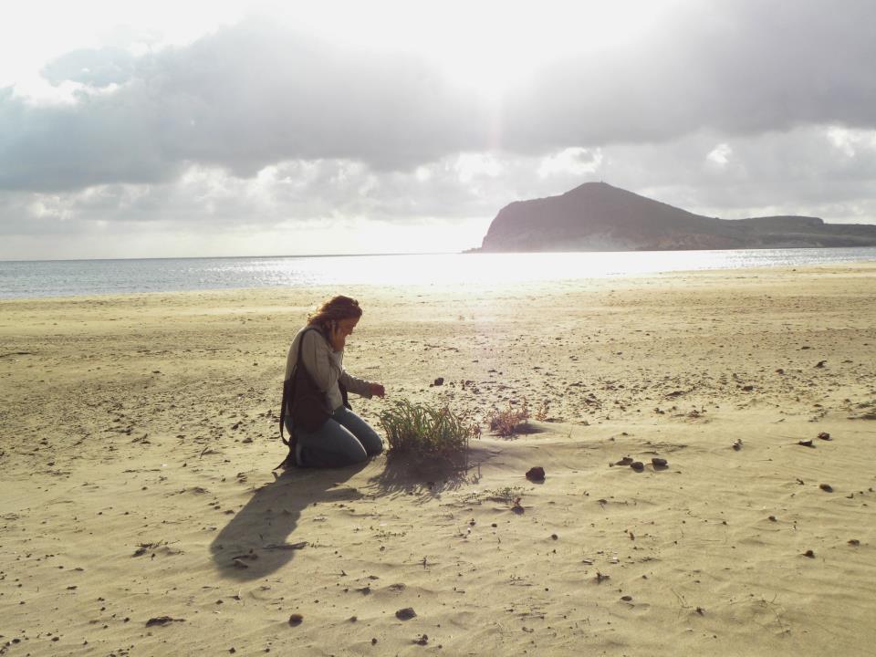 Hamelin: Pitadonia - Actividad  (El Parador de las Hortichuelas)