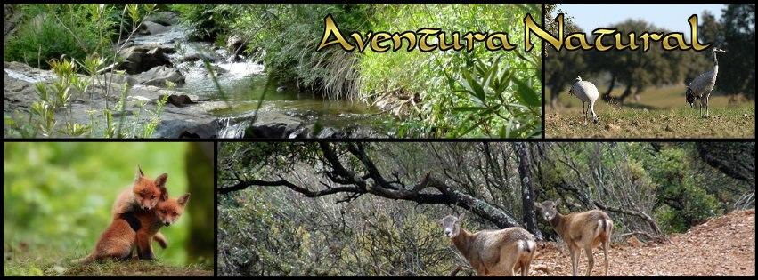 Aventura Natural - Cerro Caña