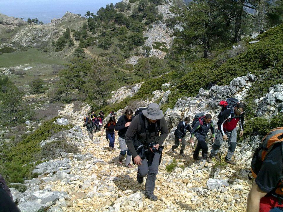 Hamelin: El Cantalar - Actividad  (La Iruela)