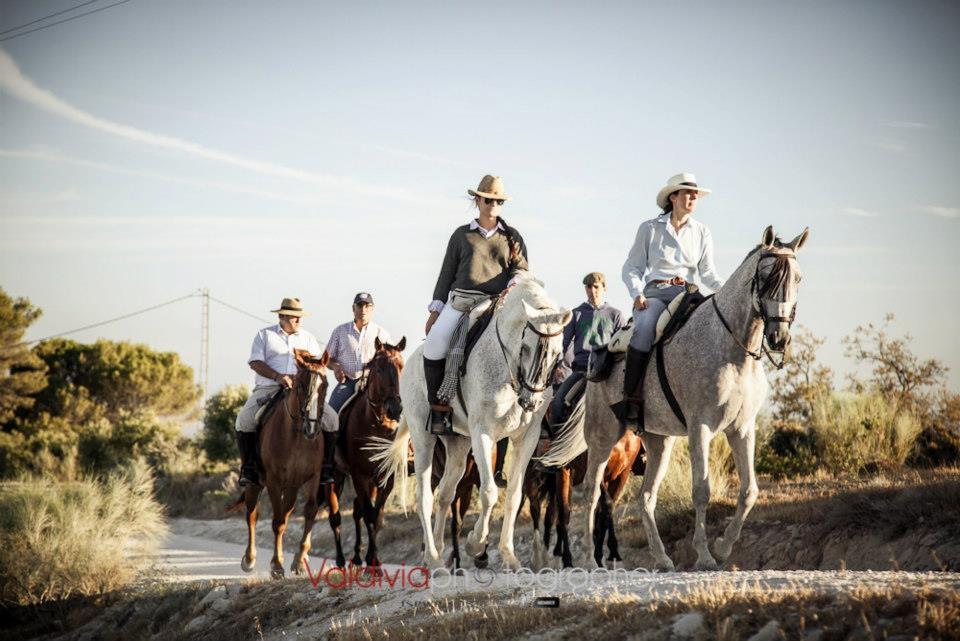 De Osuna a Ronda a caballo