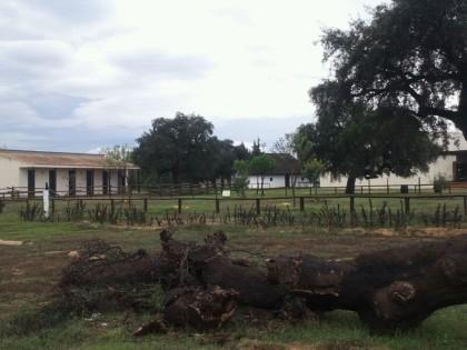 Centro de Visitantes Dehesa Boyal