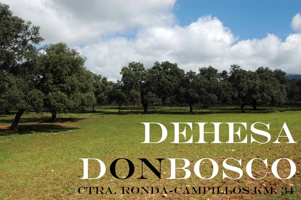 Dehesa Don Bosco