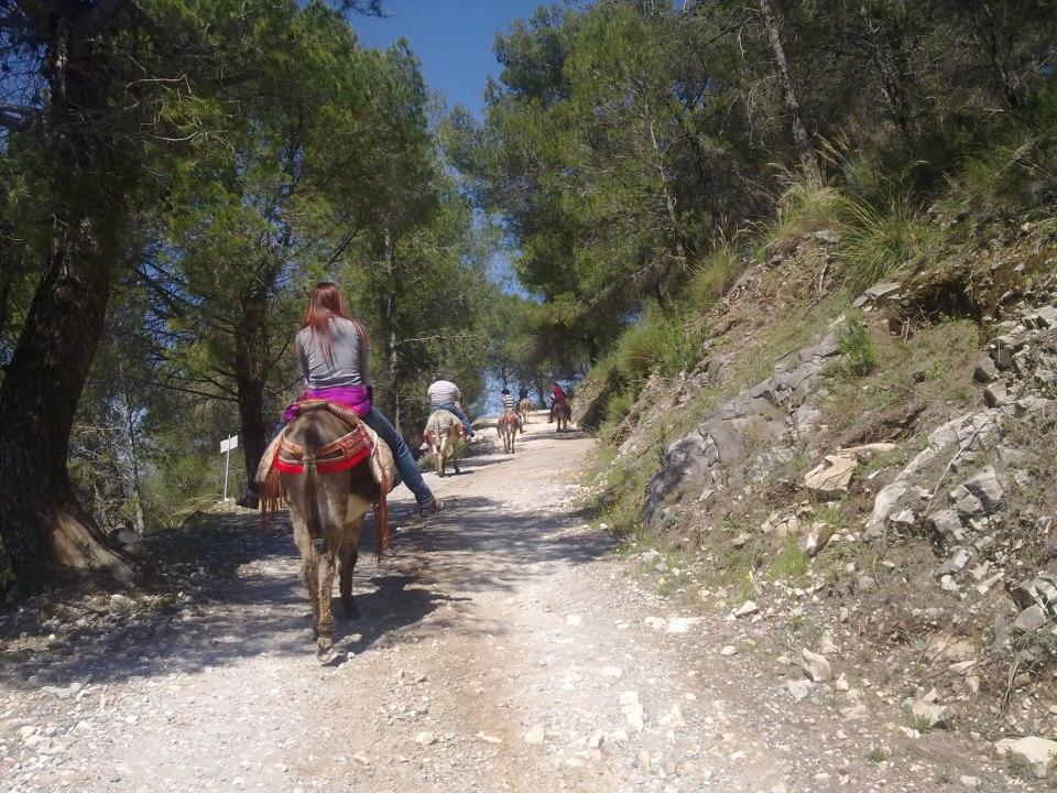 Rutas Turísticas en Burro