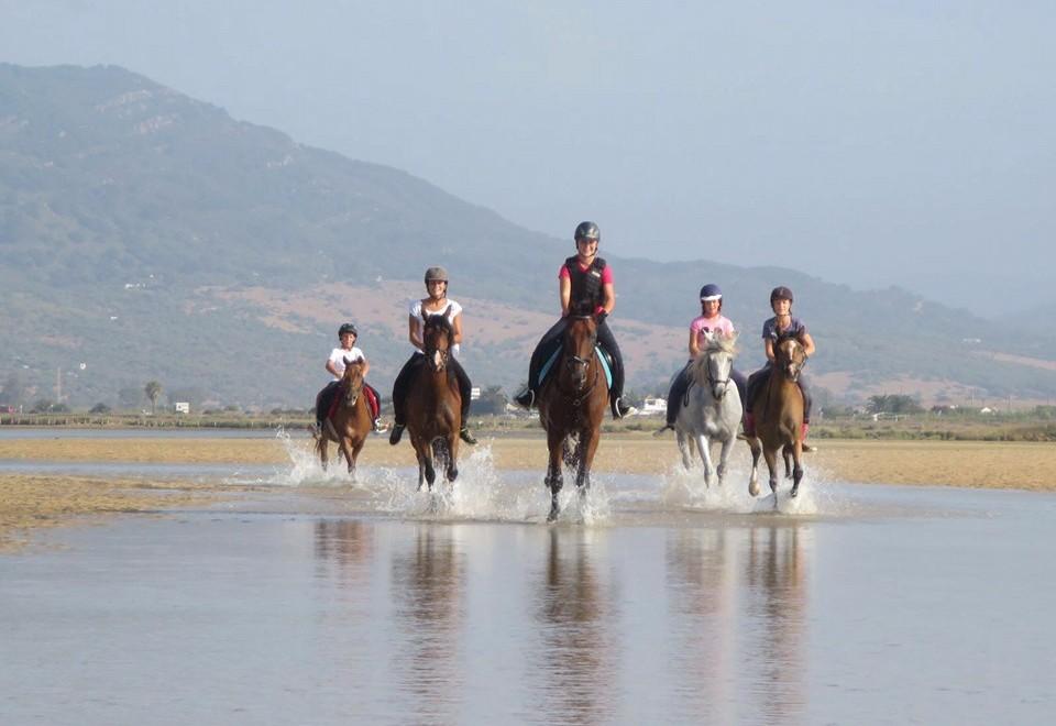 Club de Equitación Natural Guadacorte