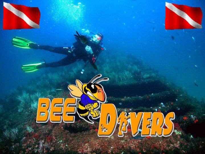 BeeDivers Gibraltar