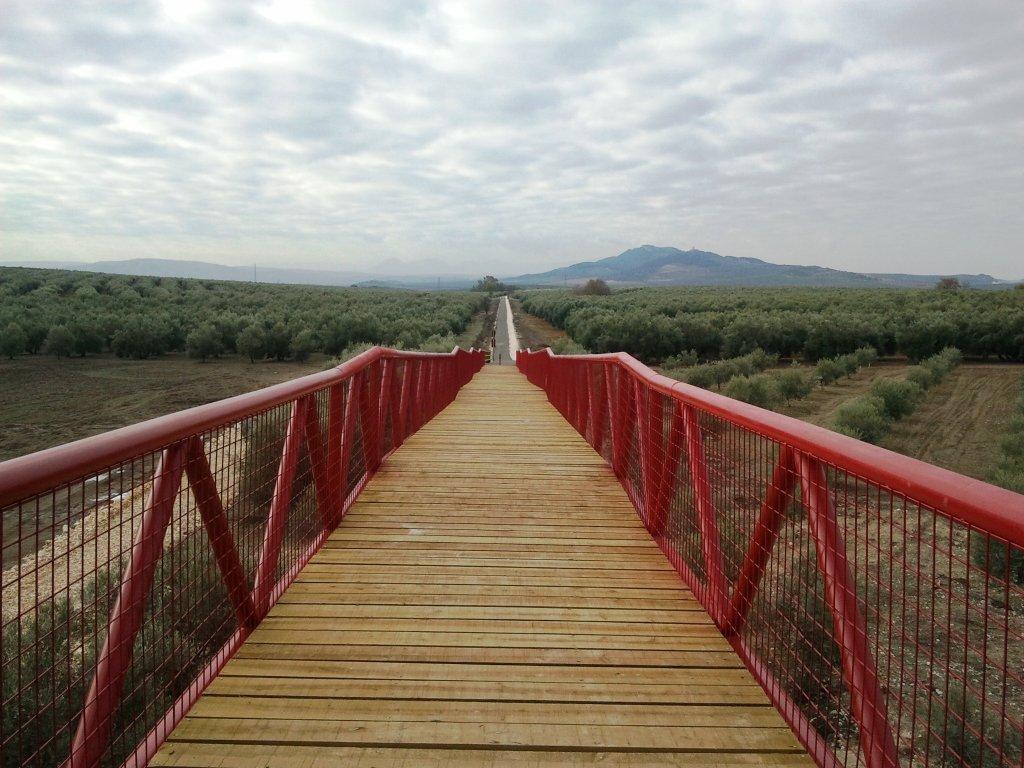 Vía Verde del Aceite. Tramo Moriles - Campo Real