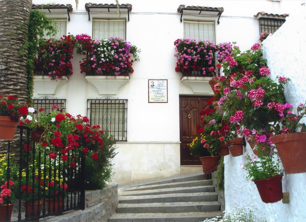 Barrio de El Cerro