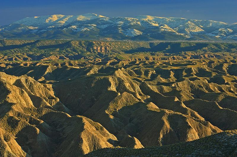 Georuta Desierto de Gorafe
