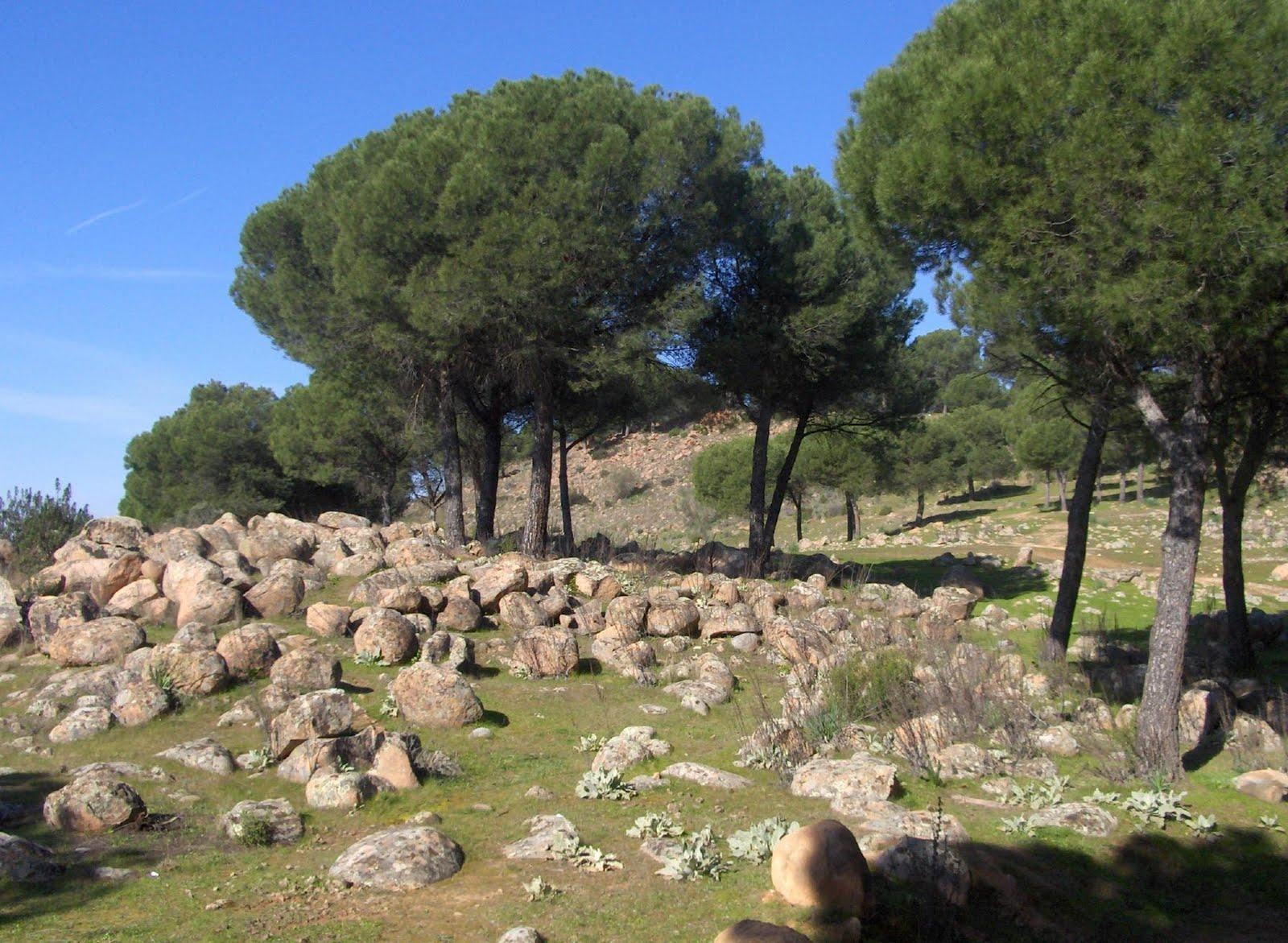 Piedras Bermejas