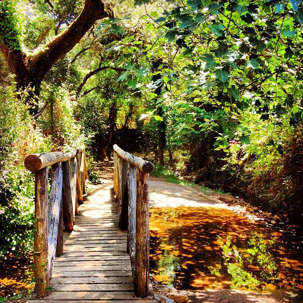 Ruta del Jabugo de la Provincia de Huelva