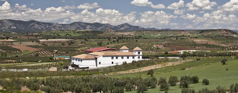 Centro de Interpretación del Olivar Ecológico
