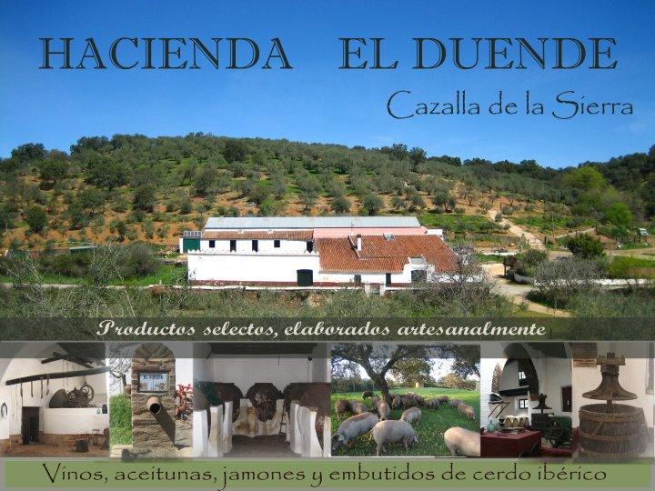 Bodega Hacienda El Duende