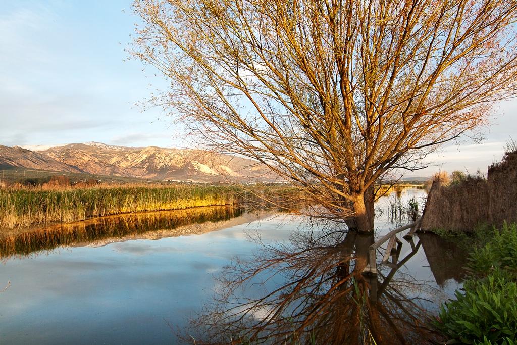 Laguna o Humedal de Padul