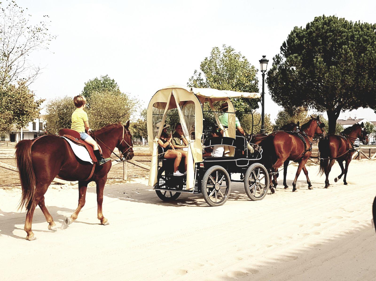 Rutas Doñana
