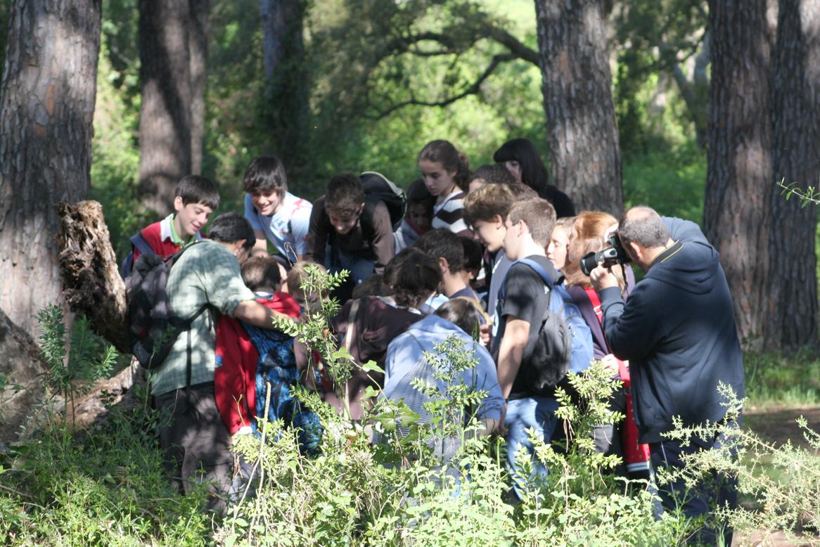 Aula de Naturaleza en Doñana - Colegios