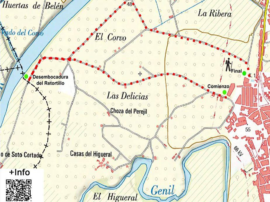 A walk through Las Delicias: A Route through El Higueral and El Corvo
