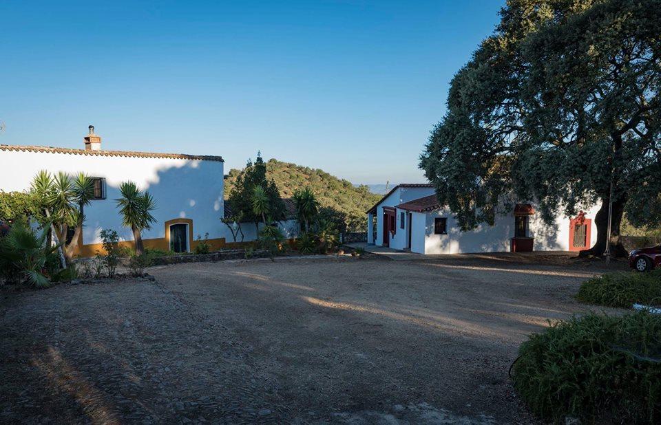 Vivienda Rural Cortijo El Manzano