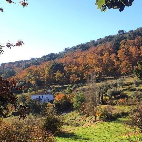 Vivienda Rural La Huerta de Arriba
