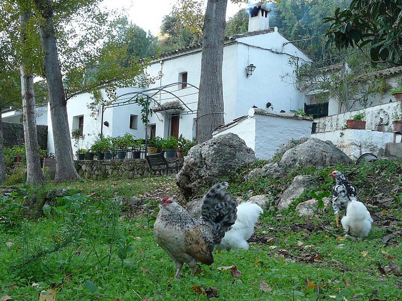 Vivienda Rural La Bodeguilla