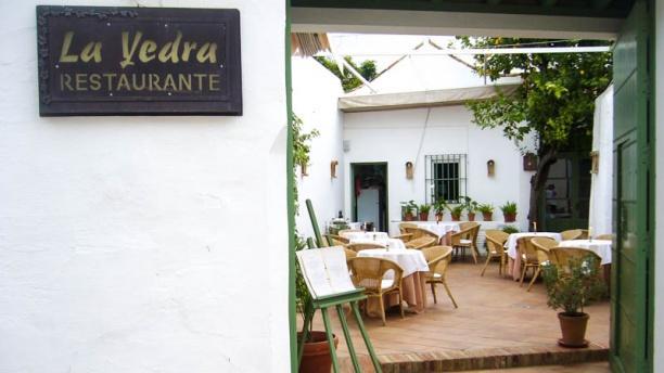 Restaurante La Yedra
