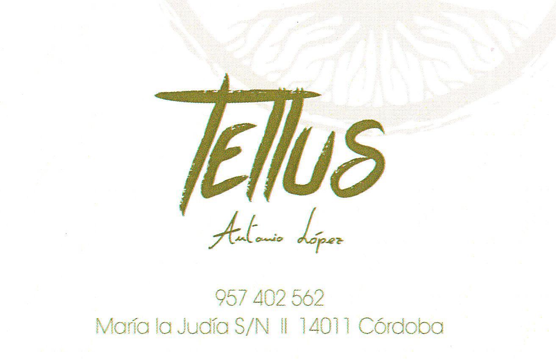 Restaurante Tellus