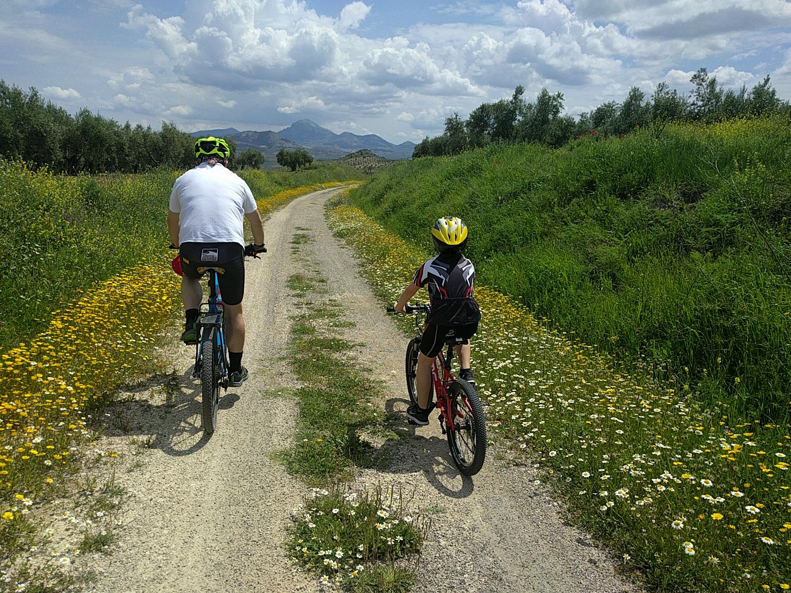En bici por la Vía Verde del Aceite