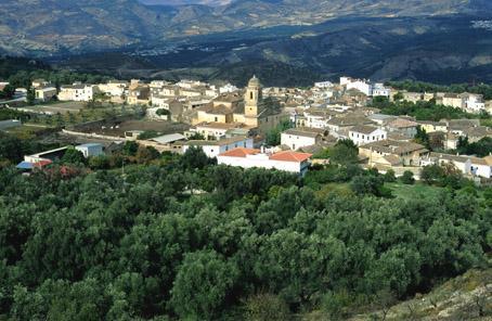 Pinar, El