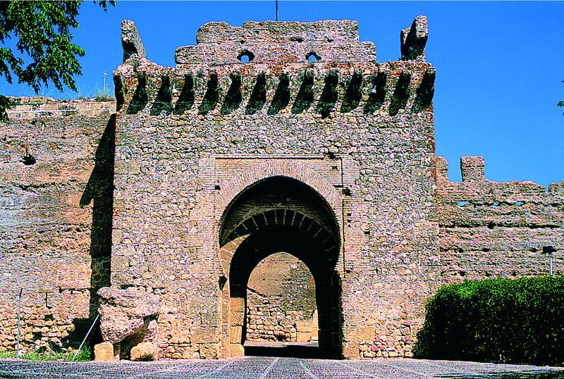 Alcázar del Rey Don Pedro