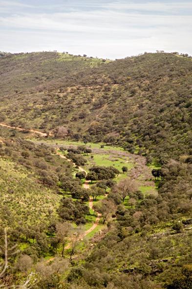 Cascada de Cimbarra